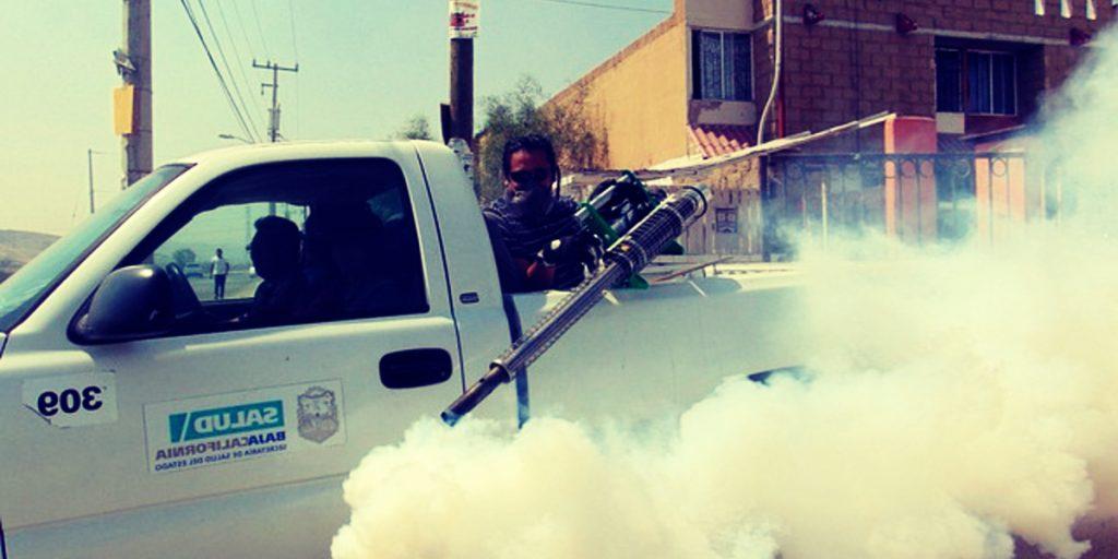 quitar olor a insecticida